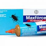 Gel MaxForce